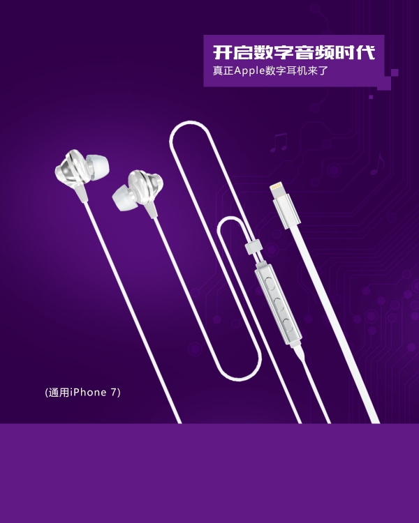 Наушники Hoco L1 Apple digital earphone(Lightning) черный